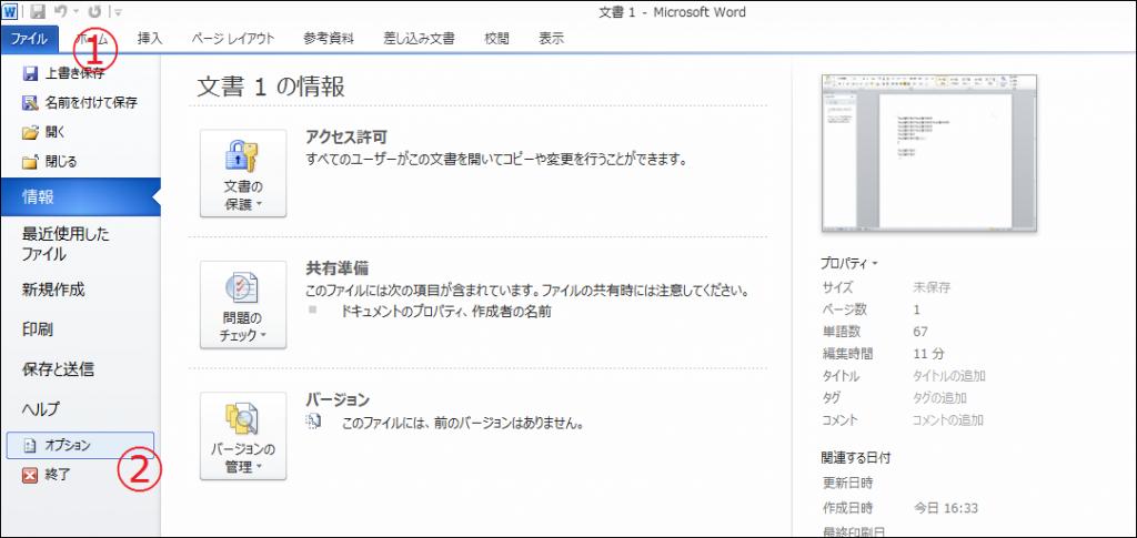 Wordファイルオプション